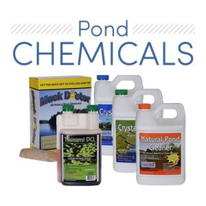 Pond Chemicals